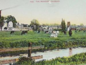 The Sudbury Commonlands